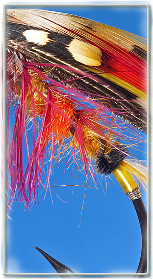 fly dressing tuition